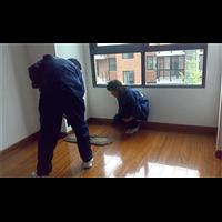 鄢陵县地毯清洗电话