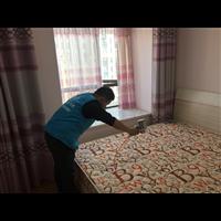 海岸家园客户家室内空气治理