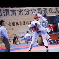 新疆儿童跆拳道培训
