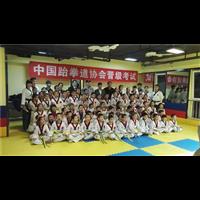 新疆少儿跆←拳道培训