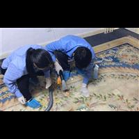 鱼峰家庭保洁服务