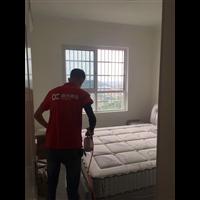 卧室除甲醛