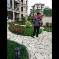 哈尔滨小区绿化