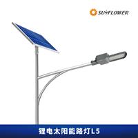 鋰電池5到6米20W太陽能LED路燈L5