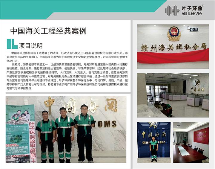 中国海关甲醛治理项目