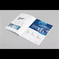 马安镇宣传册印刷