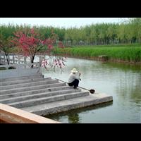 河北中青国际旅行社有限公司