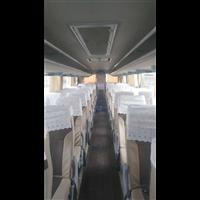 新疆旅游包车师傅