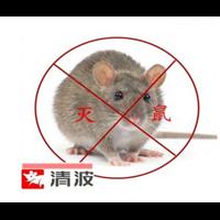湖州能多杰灭老鼠拥有