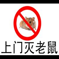 拉萨酒店灭鼠老鼠的生活习性及危害