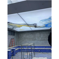 安徽游泳吊顶