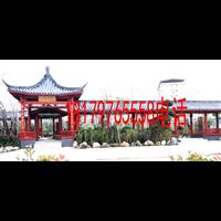 赣州柳桉木价格赣州柳桉木原木厂家直供柳桉木防腐木