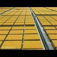 邯郸水泥便道砖便道砖厂家透水砖价格