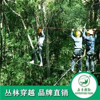 历奇探险丛林飞跃亲子户外游玩景区规划建设