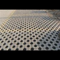 海南草坪砖