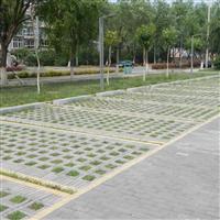 海南草坪砖厂家