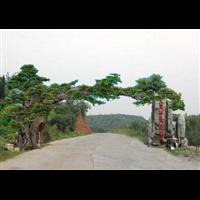 成都生态园景观a成都假山制作