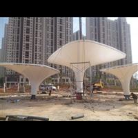 晋江膜结构设计施