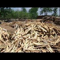 天津废木材回收电话