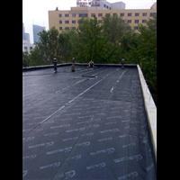 清远哪里有做屋顶防水的