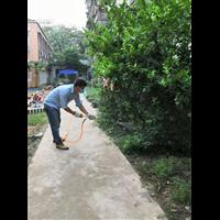 邯郸除虫除蚁卫生消毒除虫除蚁提供除蚊蝇除螨等服务