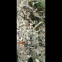 广州回收塑料