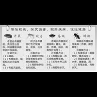 金乡县杀虫灭鼠白蚁防治杀臭虫