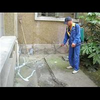 市中区杀虫灭鼠白蚁防治杀臭虫收费合理服务周到