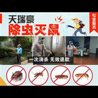 四川成都专业家庭灭蟑螂