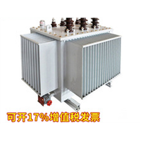 新疆电力变压器公司