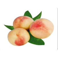 �山水蜜¤桃