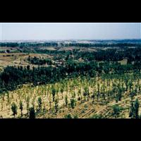 新疆水土保持验收评估