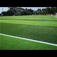 北京人造草坪