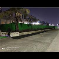 深圳植物墙