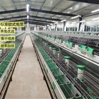 双层养殖兔笼欧式繁殖一体笼具厂家供应