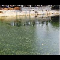 废水废气噪声污染治理