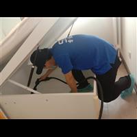 安仁县新房装修除甲醛企业